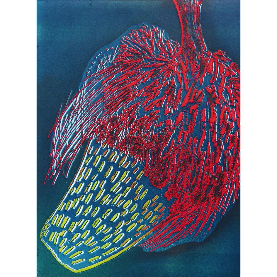 Banksia Blue Etching Unframed £95