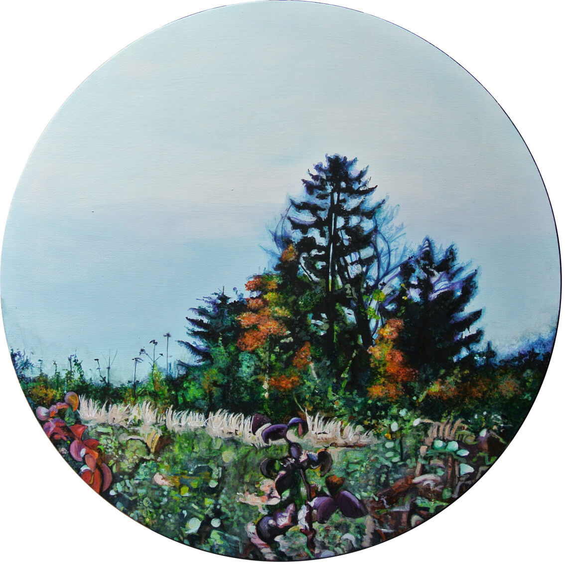 Falkenberg 2, Wuppertal– Focus on Landscape, Durchm. 50 cm, 2014, © Latzke, 850 Euro.