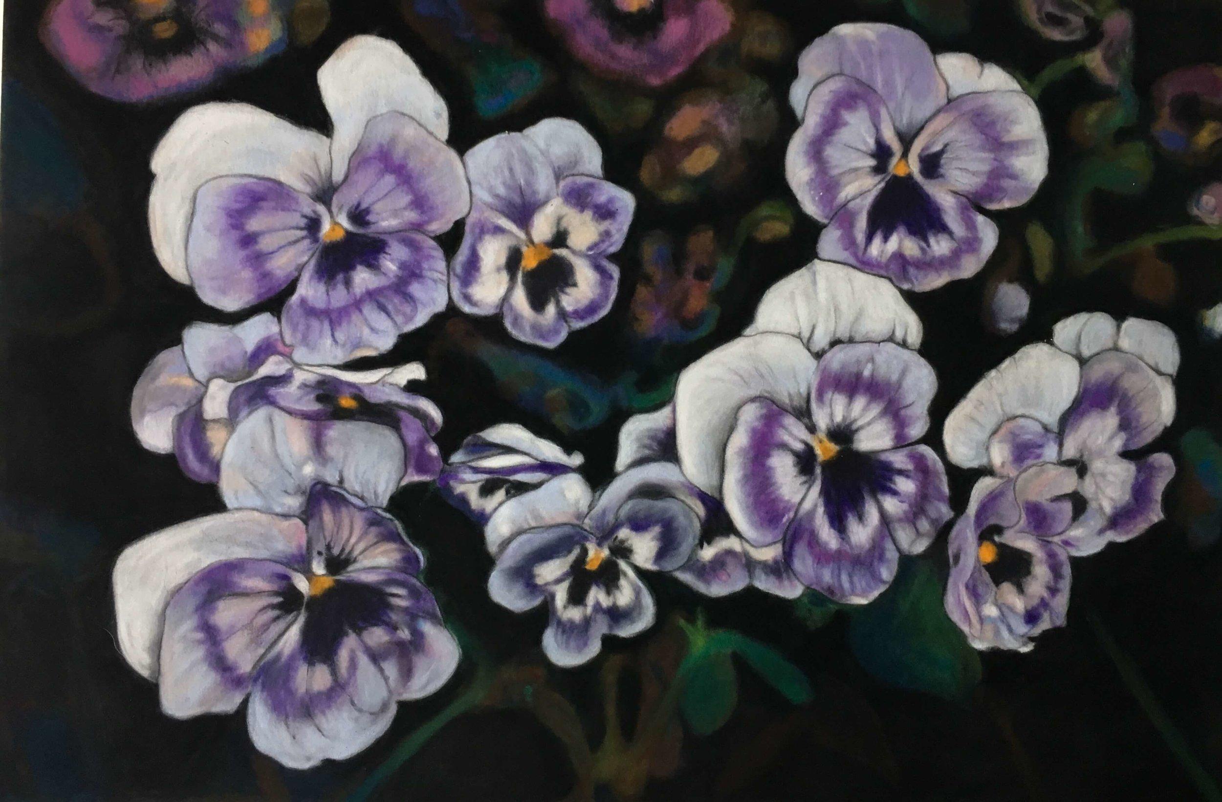 Pansy, Ute Latzke, Pastellkreide auf Velour und MDF, 40x30x1cm, 2017, Preis: 350,-