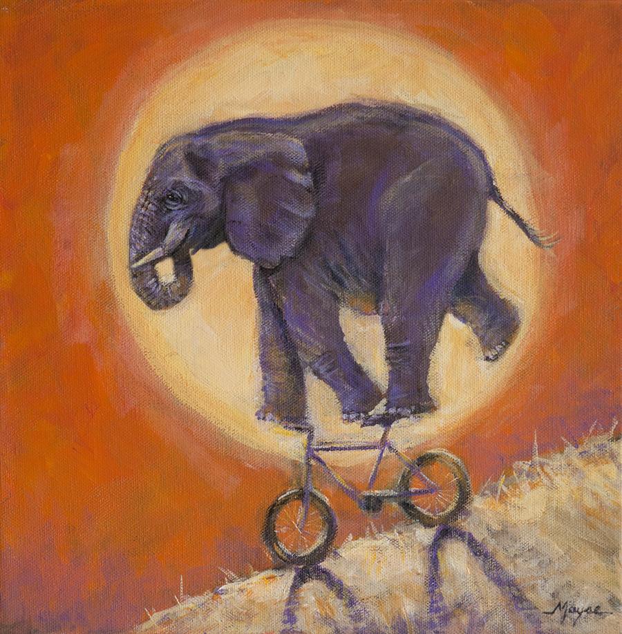 elephant bike fb mayse.jpg