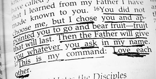 """""""You did not choose me, but I chose you and appointed you that you should go and bear fruit and that your fruit should abide, so that whatever you ask the Father in my name, He may give it to you."""" (John 15:16 ESV)"""