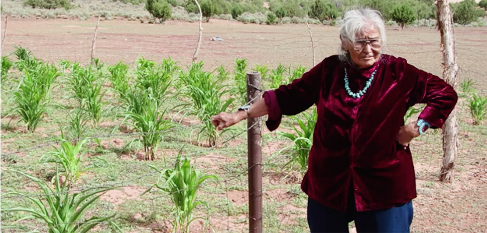 According to the Partnership With Native Americans, 23 percent of Native American families experience low food security because remote reservations have few supermarkets or access to fresh vegetables, fruits, and whole foods. [Screenshot: PBS documentary promo] lutheran indian ministries native news