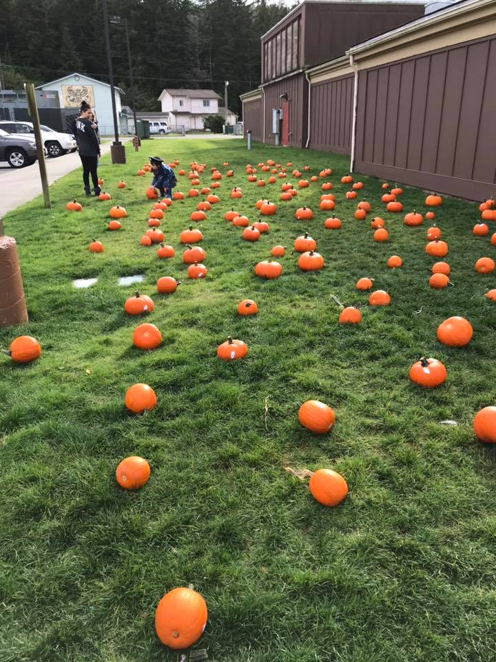 The Pumpkin Patch