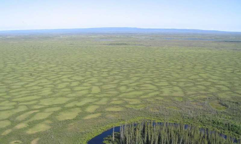 Edéhzhíe is located in the Dehcho region of the Northwest Territories. It is the first Indigenous protected area designated in Canada. Credit: Government of Northwest Territories Read more at: https://phys.org/news/2018-11-indigenous-areas.html#jCp