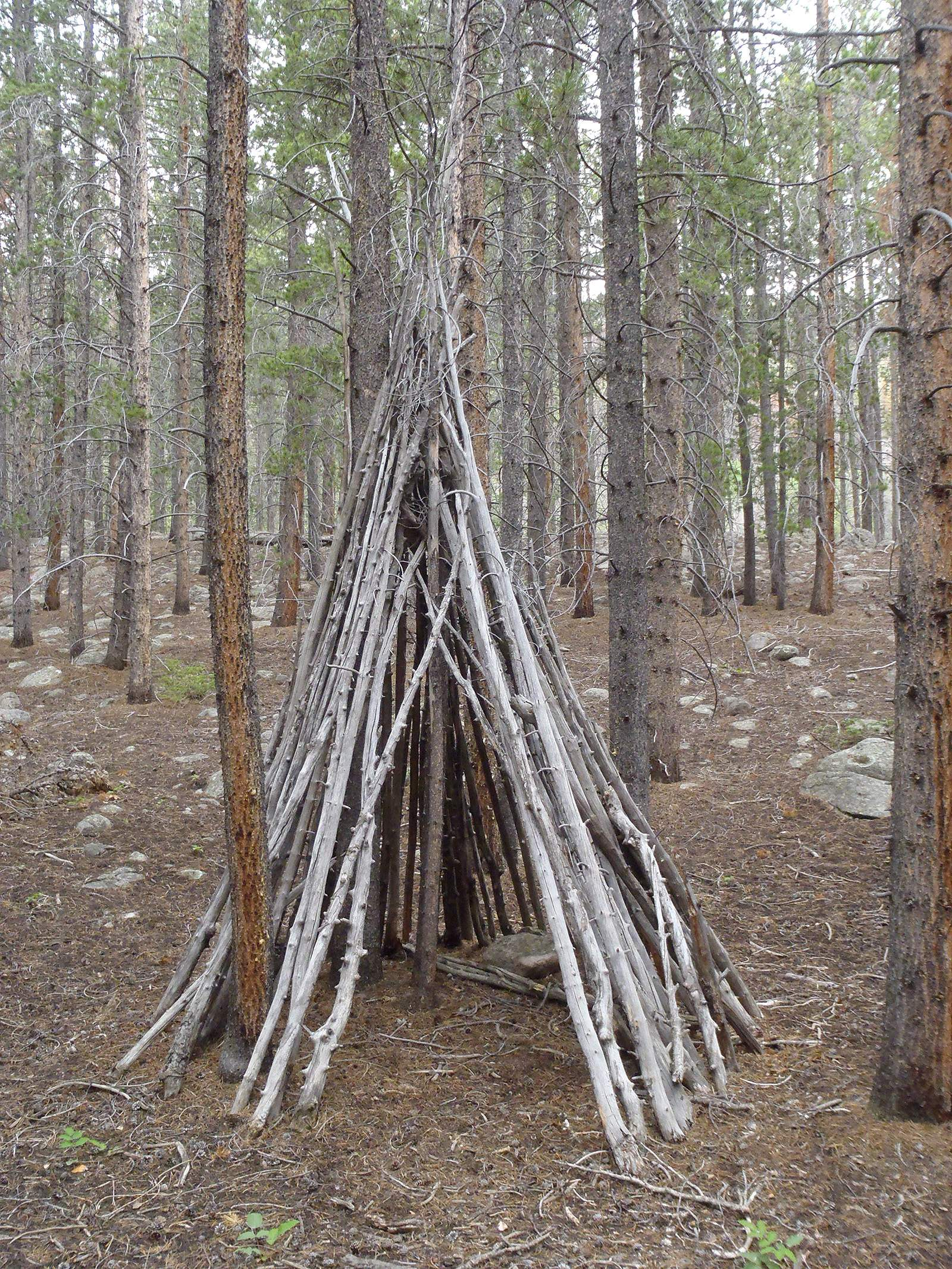 lutheran indian ministries native news - Wickiups served as basic, temporary structures for Native people who were on the move, either to hunting lands or ceremonial sites. Courtesy of Curtis Martin