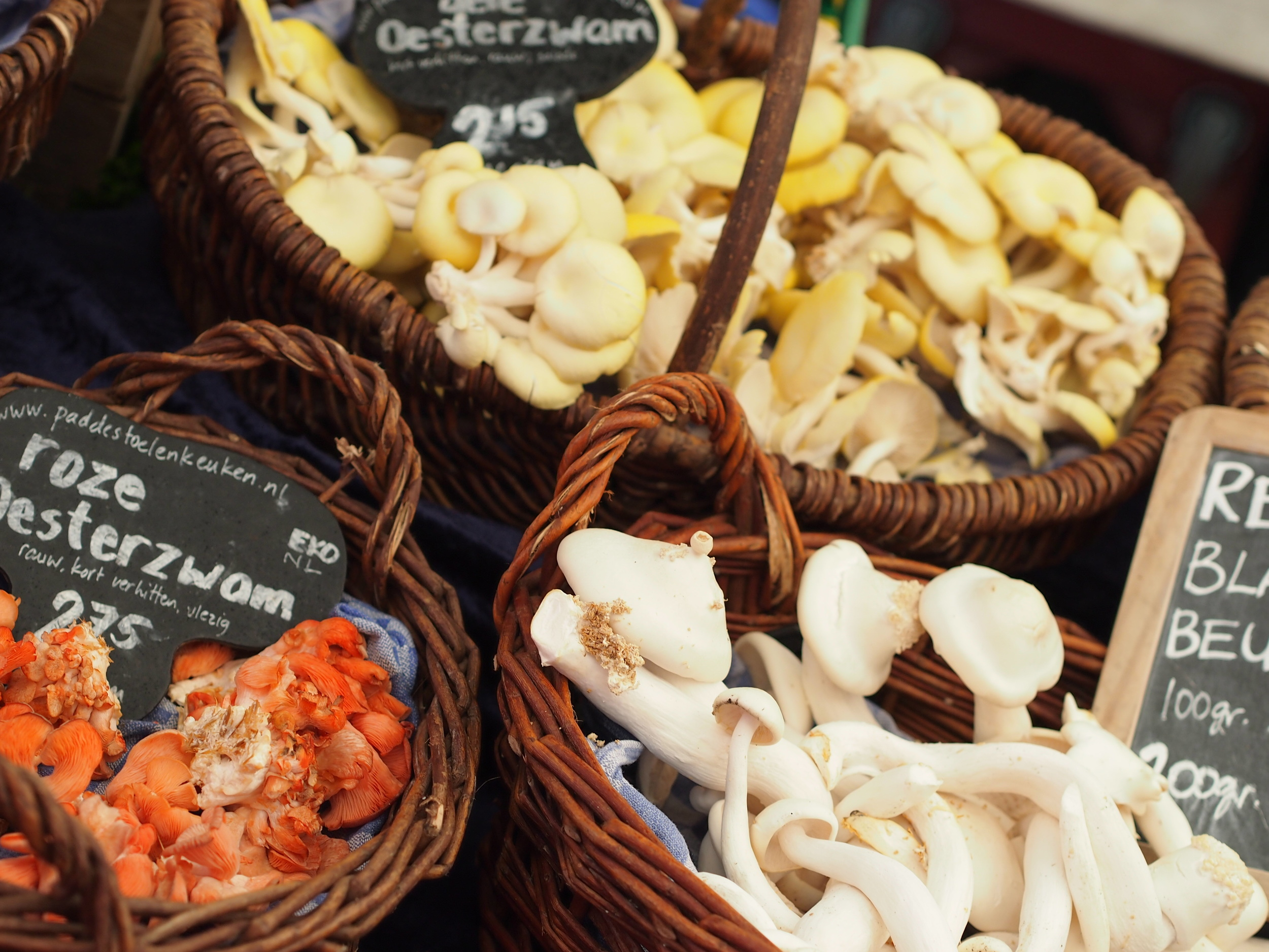 The mushroom and cheese offerings were the highlight of this Amsterdam market visit.