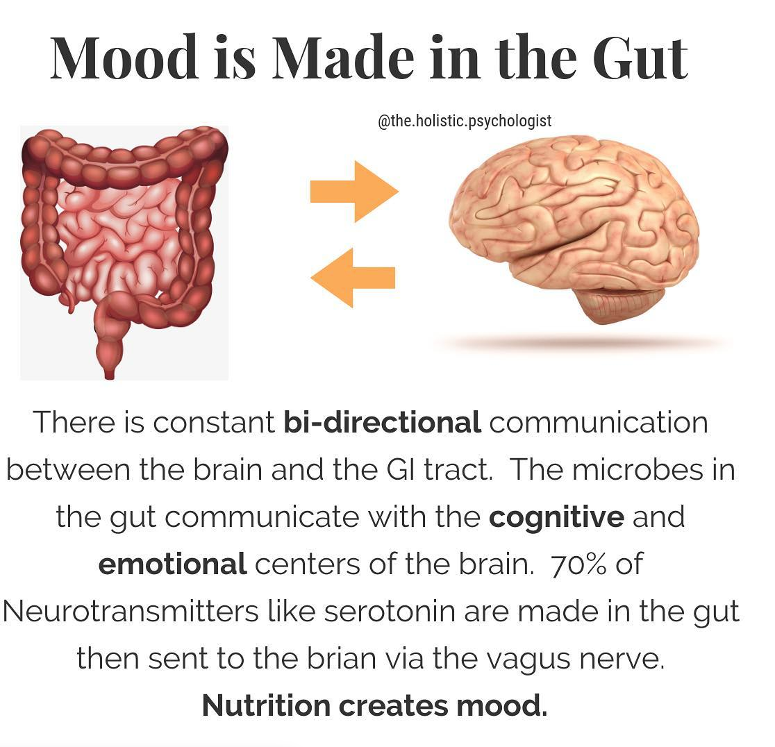 The Holistic Psychologist - Mood is Made in the Gut