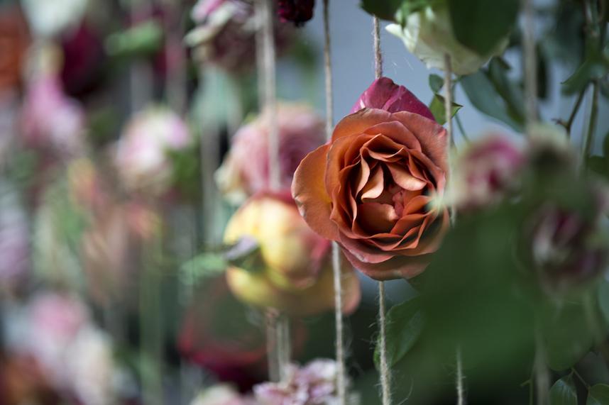 FlowerWalldarkanddiamondweb.jpeg