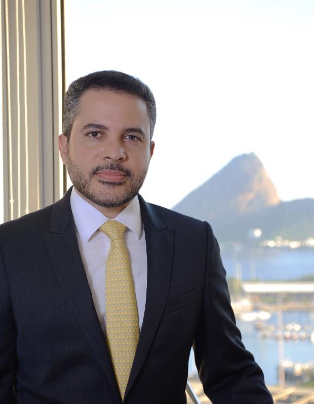 Paulo Fernando Souto Maior Borges  -  curriculum
