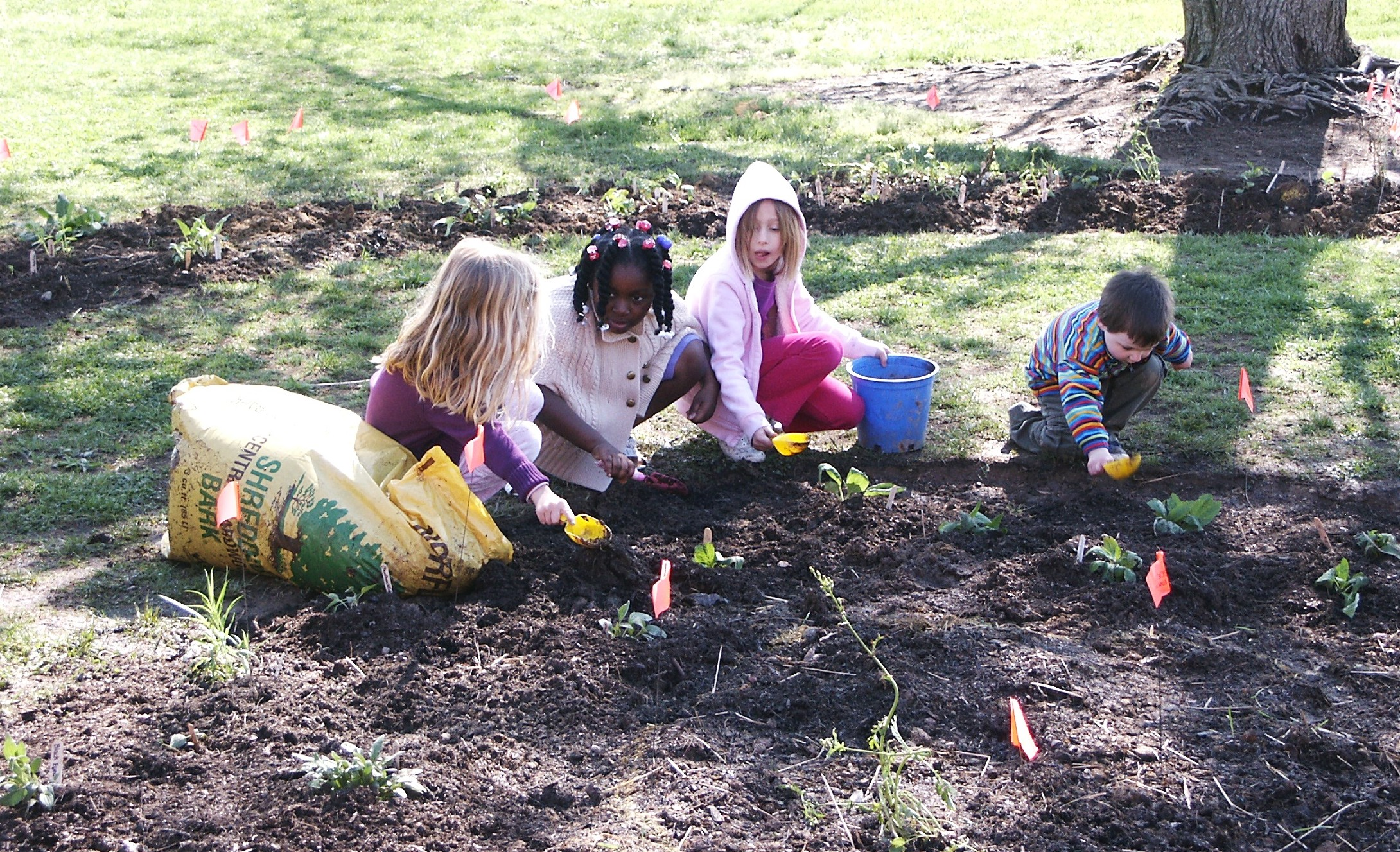 Kids planting pollinators together by USFWS Fisheries/CC BY