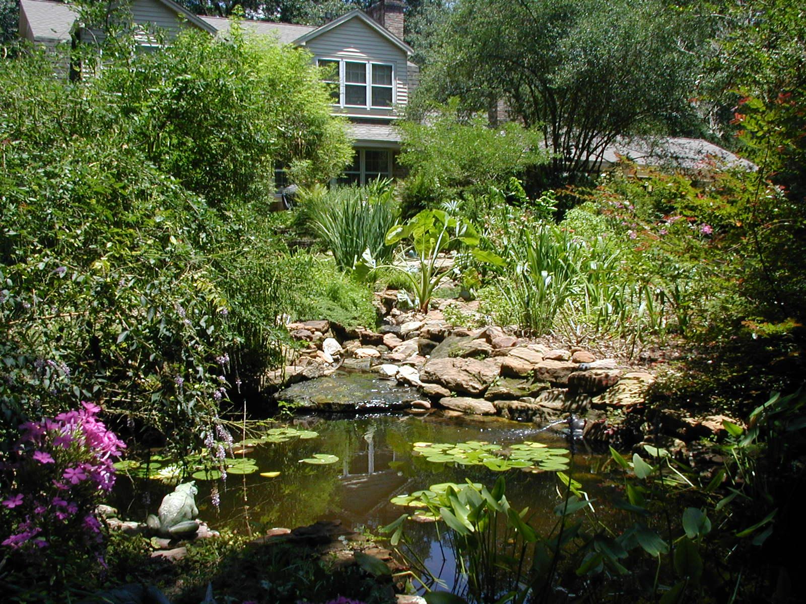 Pond by Living Expression Landscapes