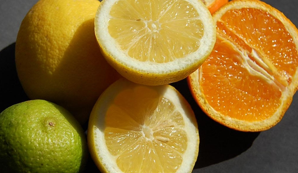 Still Life Lime, Oranges, & Lemons by Robynlou Kavanagh/CC BY