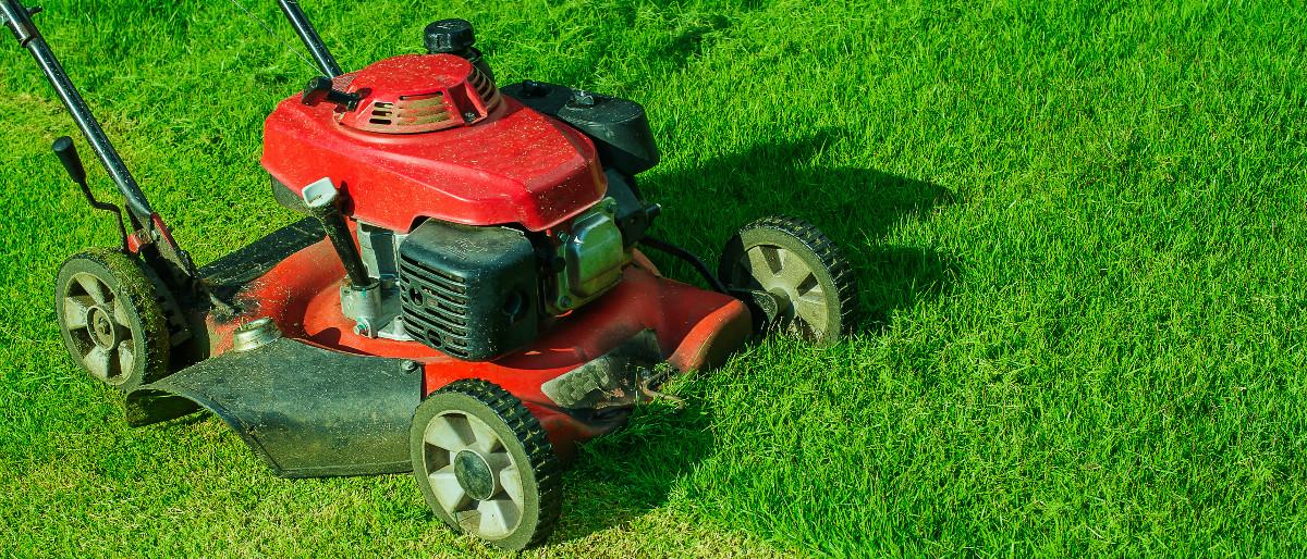 lawn-mower-Shutterstock-SingjaiStock.jpg