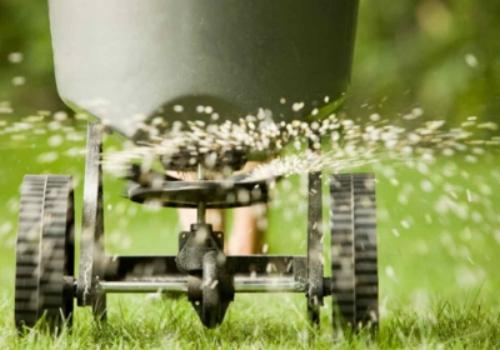 Lawn Fertilizer.jpg