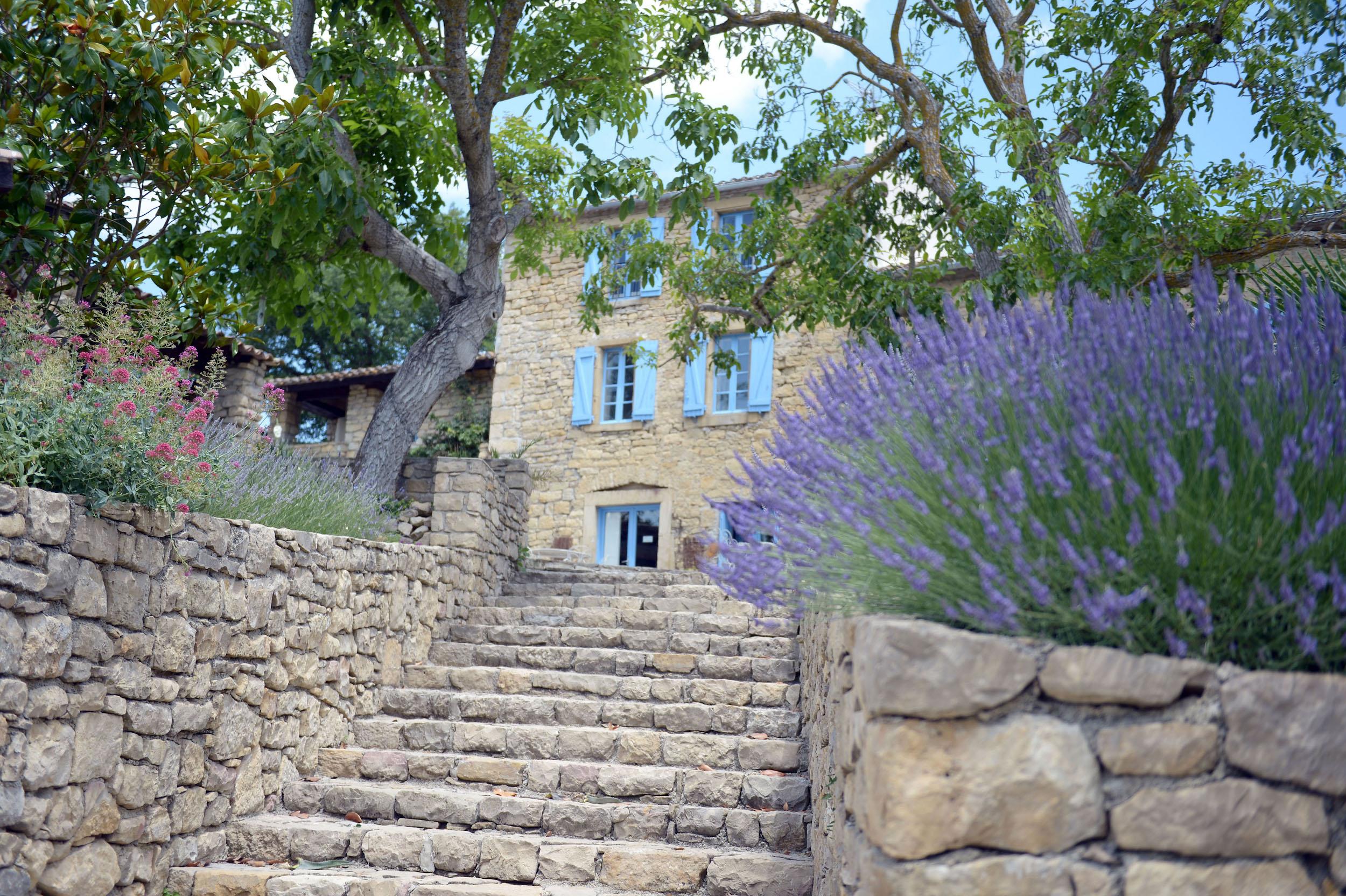 Lavenders & steps.JPG