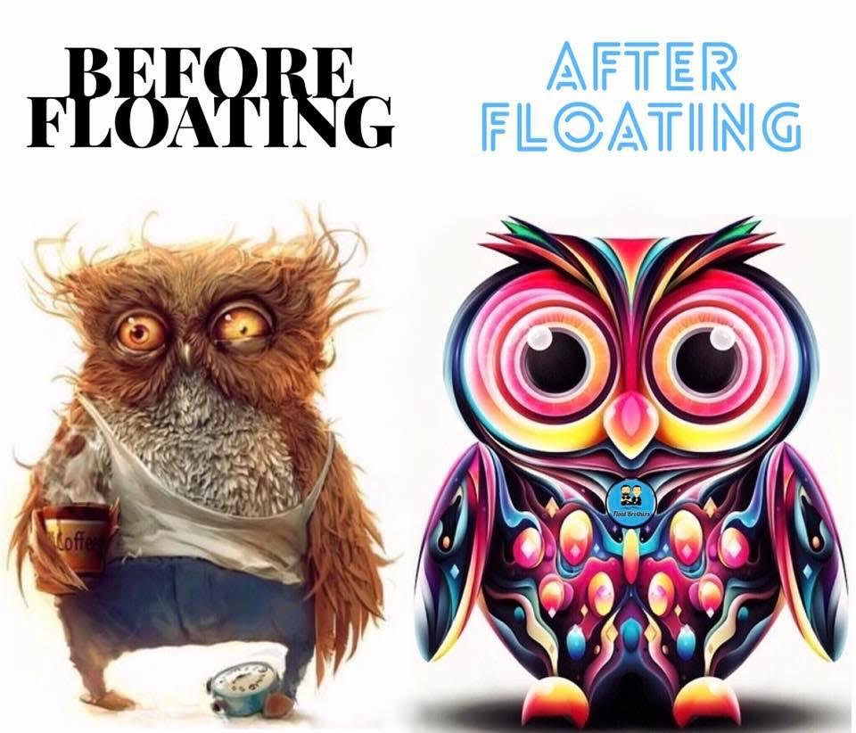 Before_After floating owl.jpg