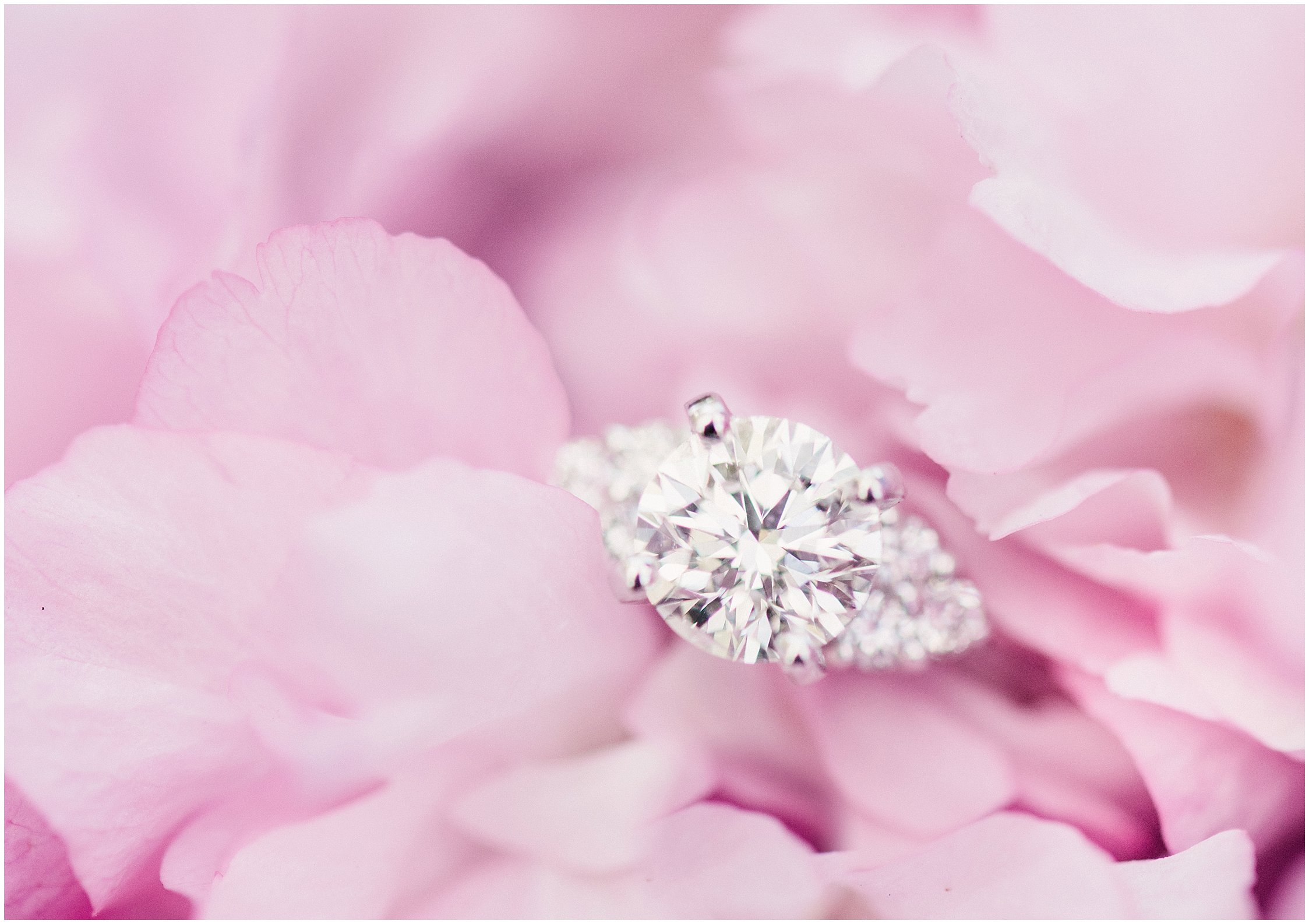 engagement ring in pretty pink flower in central park new york
