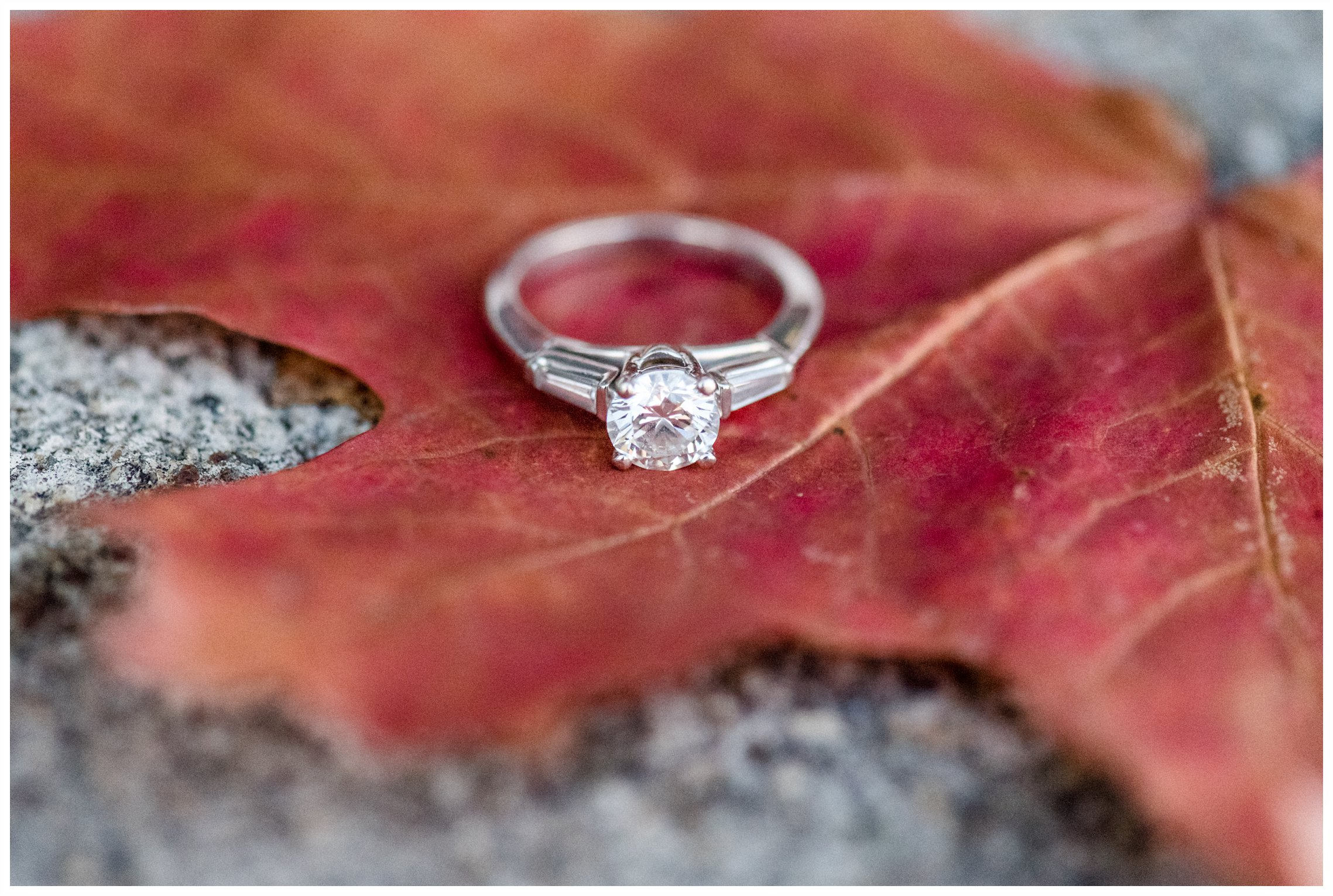 Beautiful engagement ring on a pretty leaf for engagement session at Verona Park, Verona New Jersey