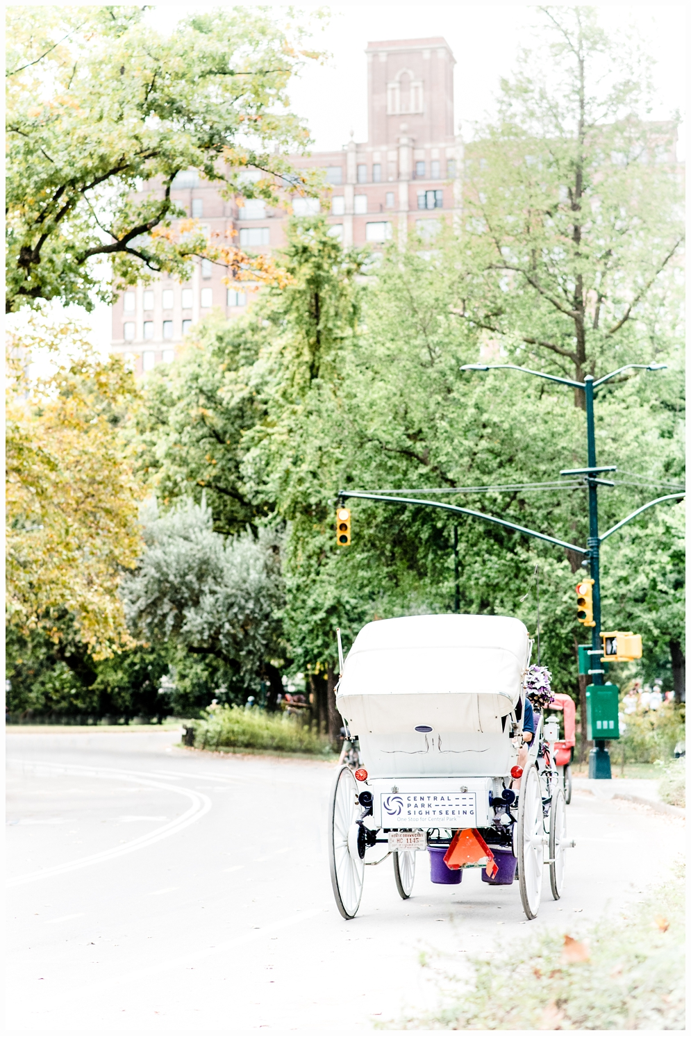 Central park horse drawn carriage