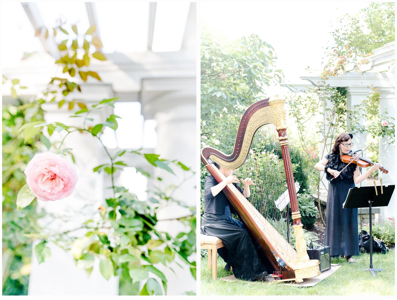 harpist playing at wedding
