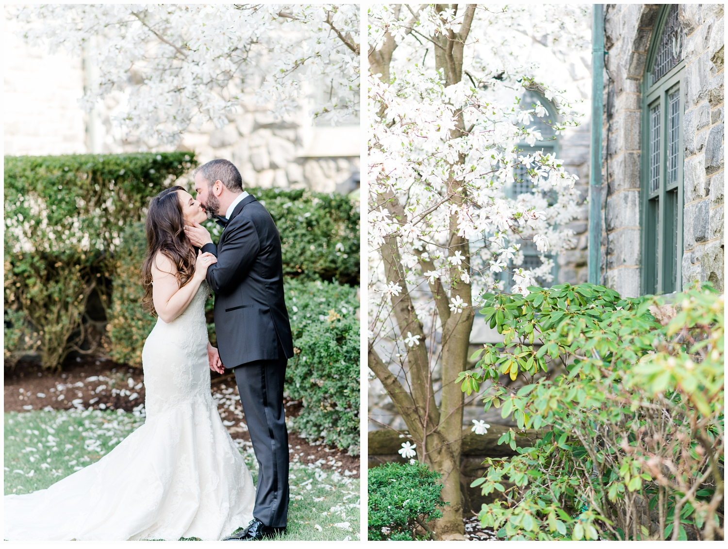 bride and groom portraits under a cherry tree