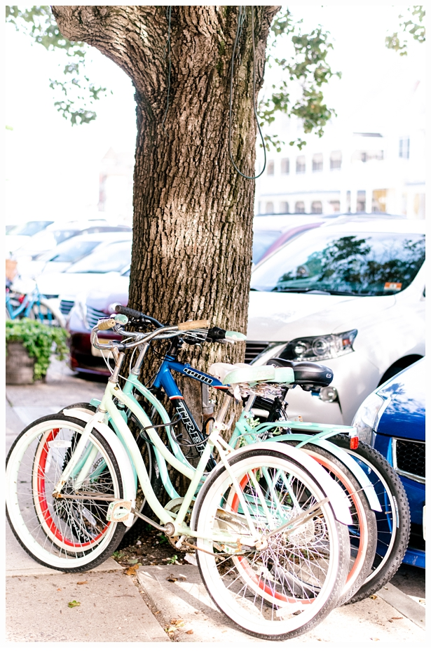 pretty beach bicycles up against a tree in ocean grove