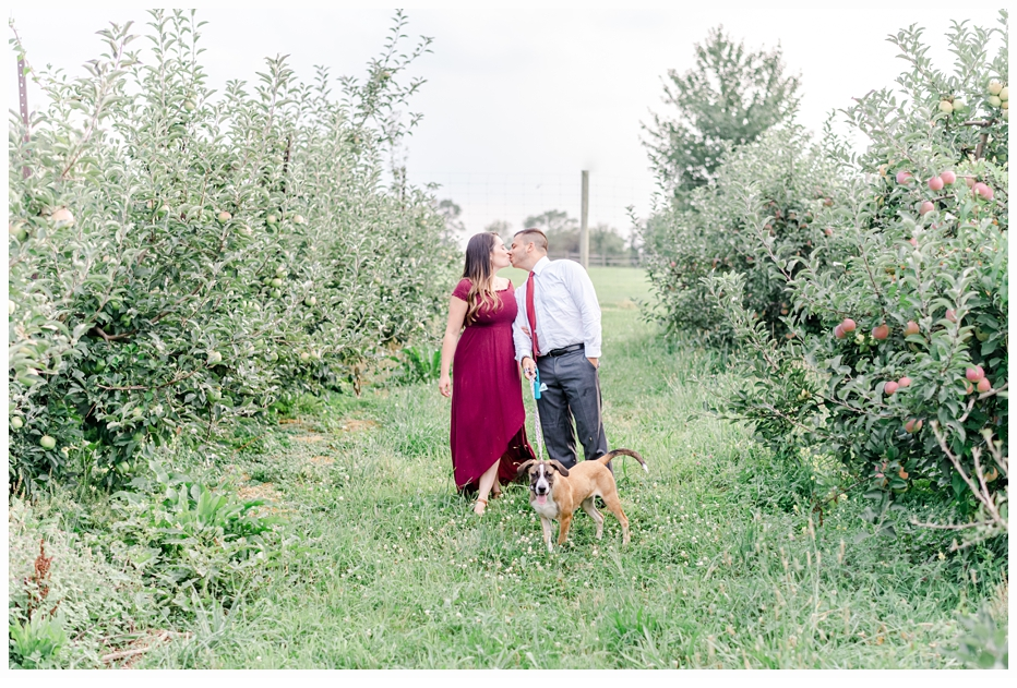 engaged couple walking their dog in apply orchard