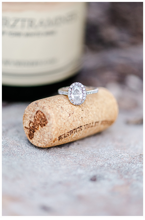 megan-bobby-engagement-session-warwick-winery_0641.jpg