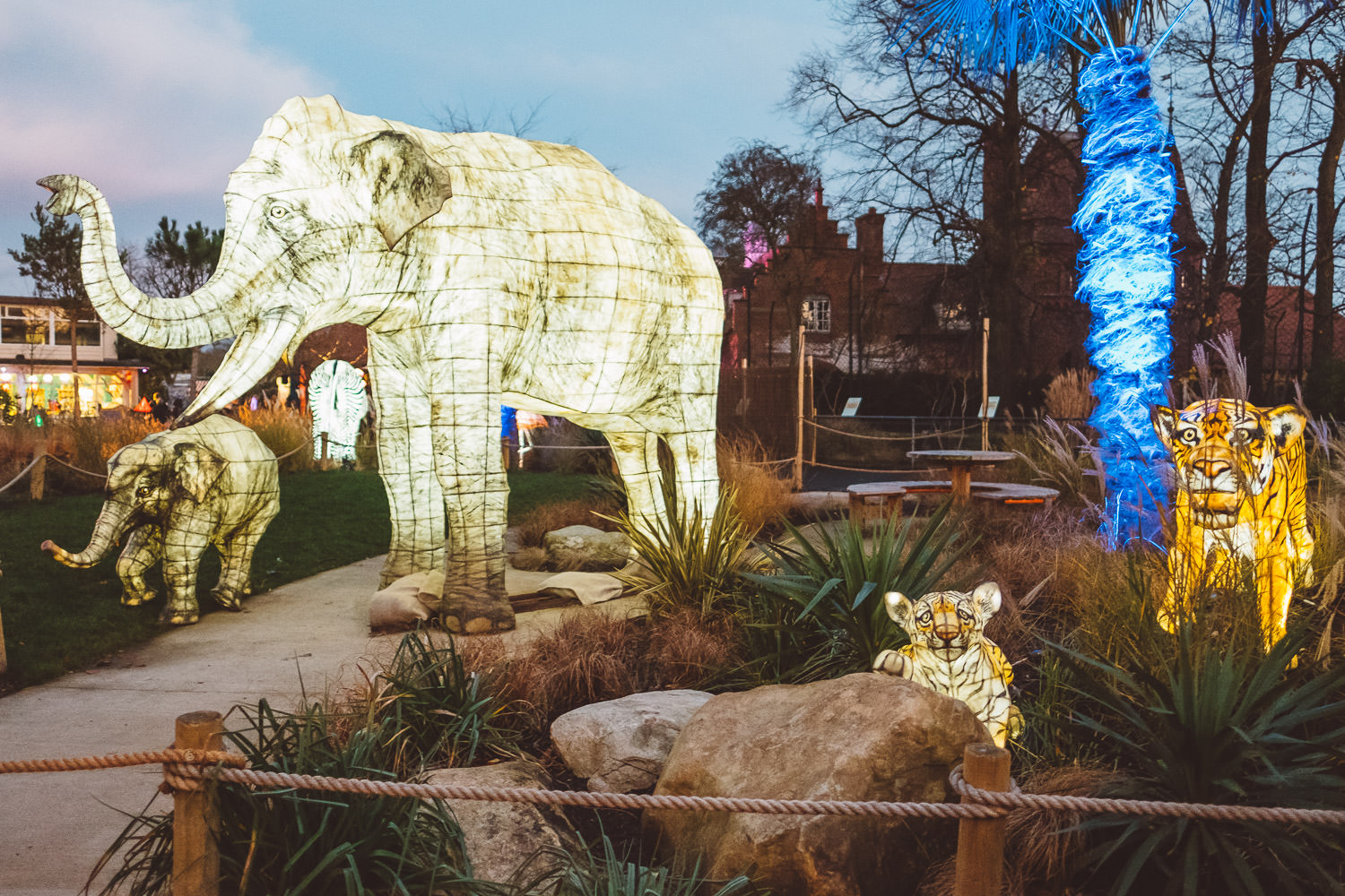 cocktail_saturdays_the_lanterns_at_chester_zoo-7794.jpg
