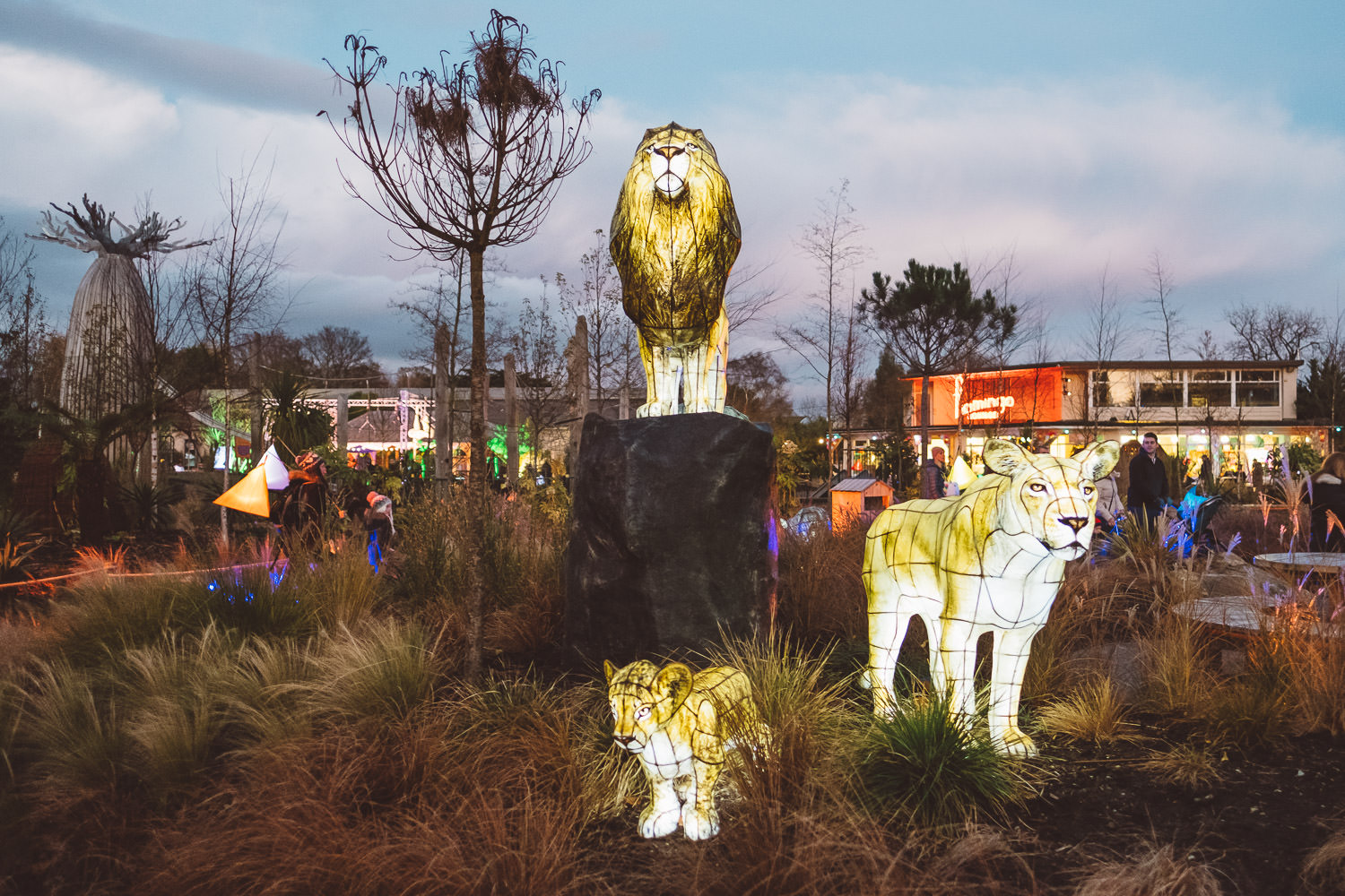 cocktail_saturdays_the_lanterns_at_chester_zoo-7799.jpg