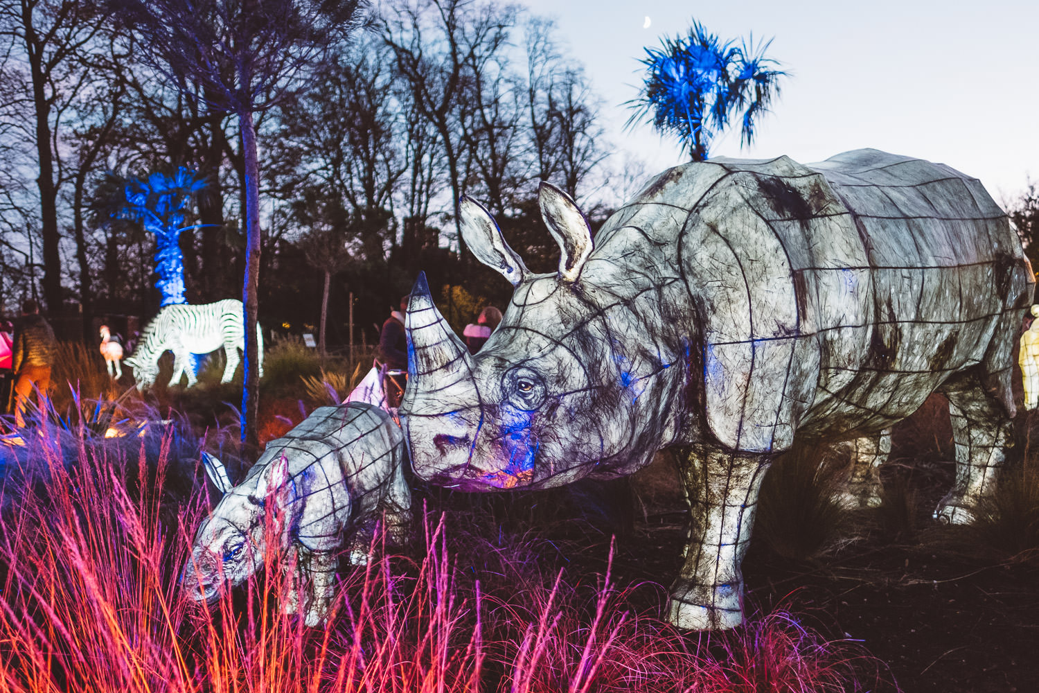 cocktail_saturdays_the_lanterns_at_chester_zoo-7803.jpg