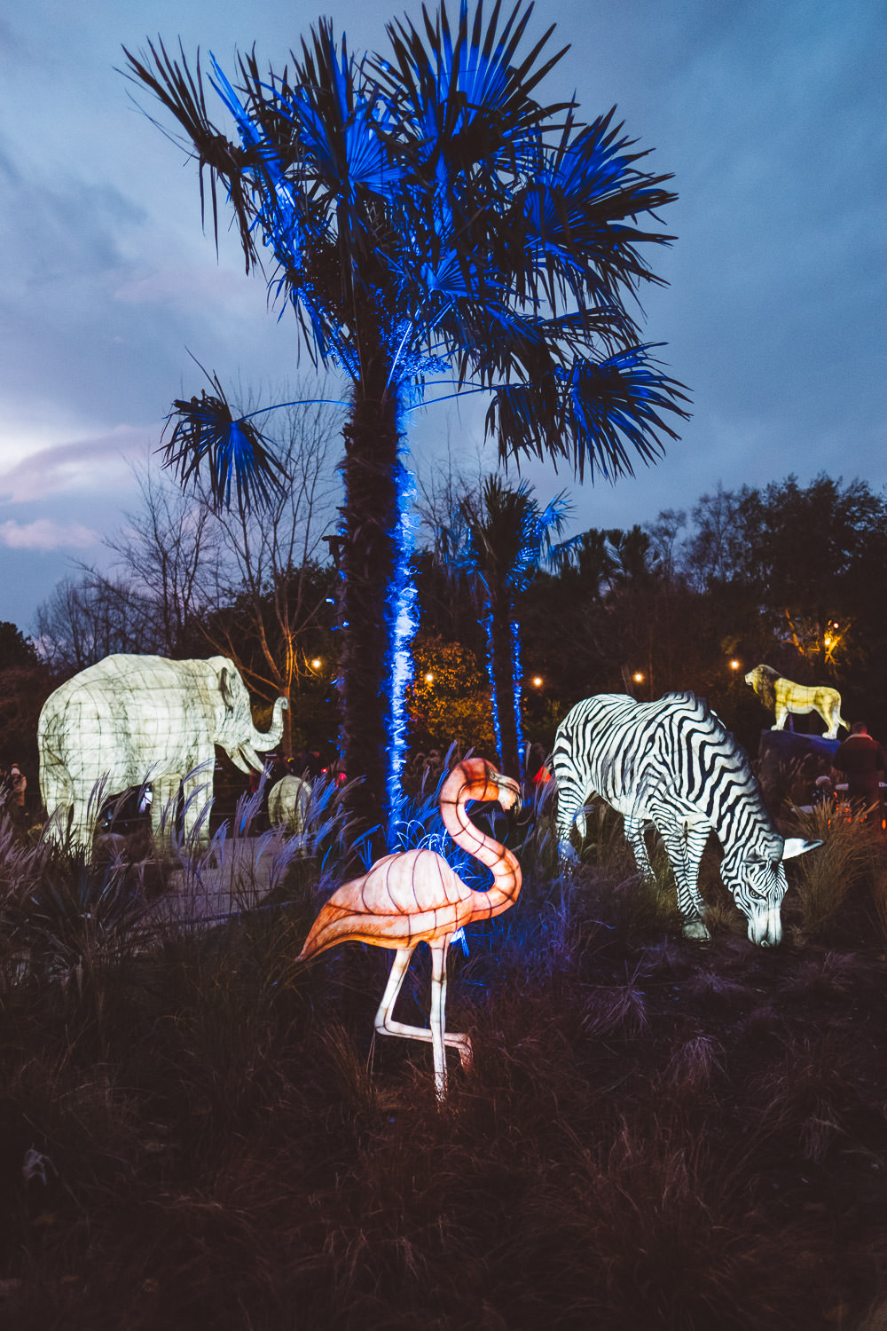 cocktail_saturdays_the_lanterns_at_chester_zoo-7809.jpg