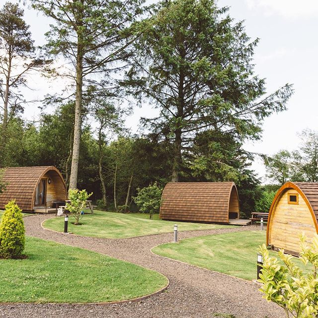 """""""There is no Wi-fi in the forest, but I promise you will find a better connection."""" - Glamping @falconforestglamping on the blog, click link in bio 🏕🔥"""