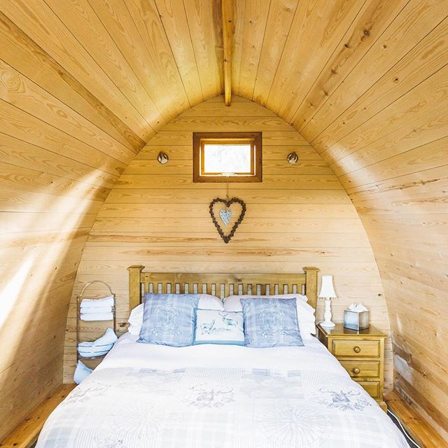 Our cosy little pod at Falcon Forest Glamping ⛺️💤