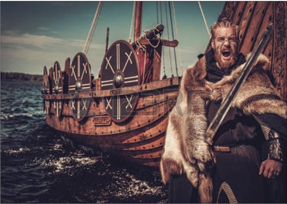 Wrath of the Norsemen.jpg
