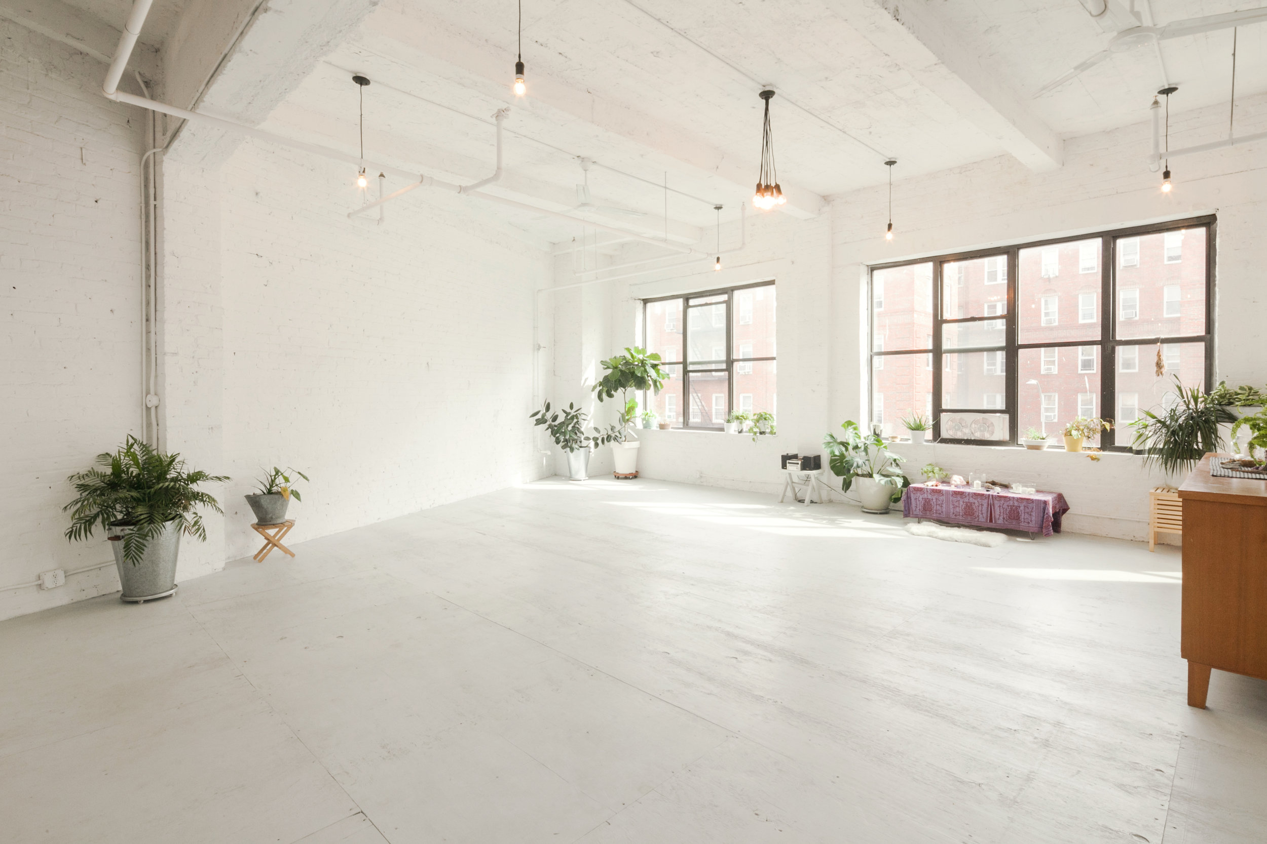 The space is filled with natural light all day, and various greenery is here to filter the air.