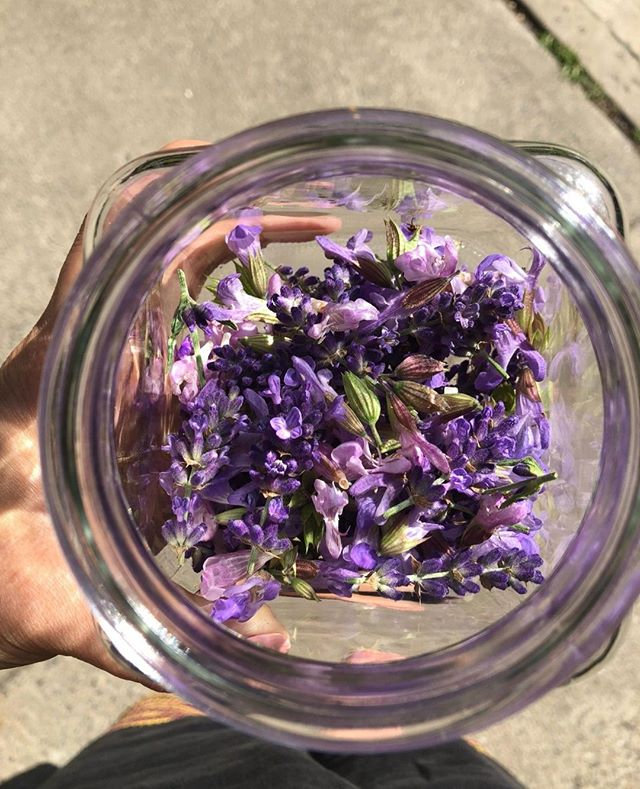 Did you miss your chance to sign up for the Herbal medicine making course this year?  * Do not worry -  send an email : liz.neves@mac.com to be notified for the next year! * Every plant has medicine. We all knew this once, yet in only a few generations many of us have forgotten. Fortunately, the memory is still there, deep in our bones. Here is an opportunity to remember. Deeply rooted amidst the layers of built environment, healing plants are thriving. They are waiting to teach us resilience and other important lessons. Join us to learn from these wise teachers, our elders, the plants. * ***** #minkabrooklyn #wellness #healing #plantmedicine #wicthes #healingcommunity #healthyself #naturalhealing #alternativemedicine #alternativehealing #empowerment #personalempowerment #brooklyn #crownheights #prospectheights #leffertsgarden #parkslope #bedstuy #windsorterrace #kensington #injusticeanywhereisathreattojusticeeverywhere  #waterislife