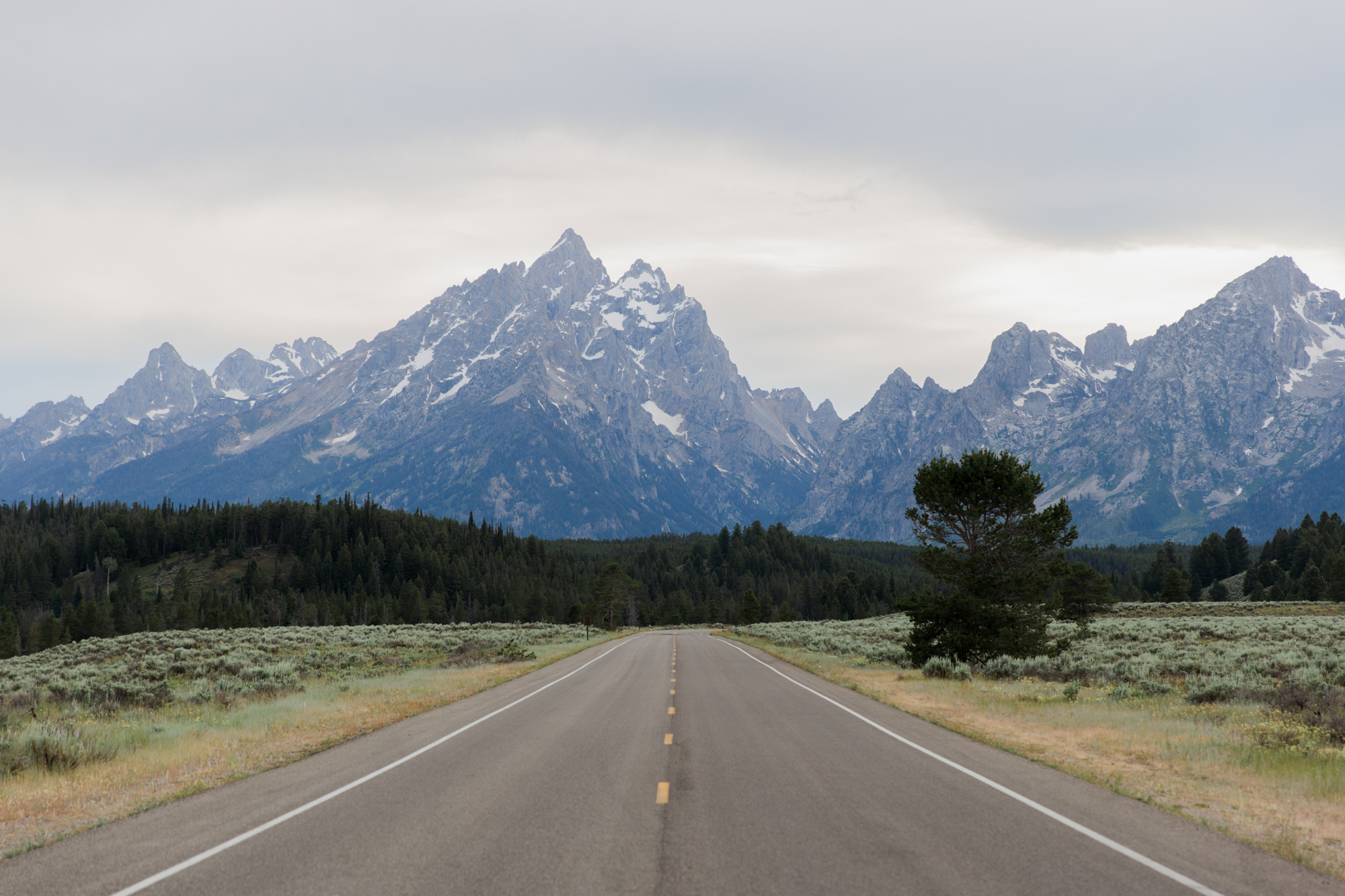 grand teton national park // roadtrip adventure // www.abbihearne.com