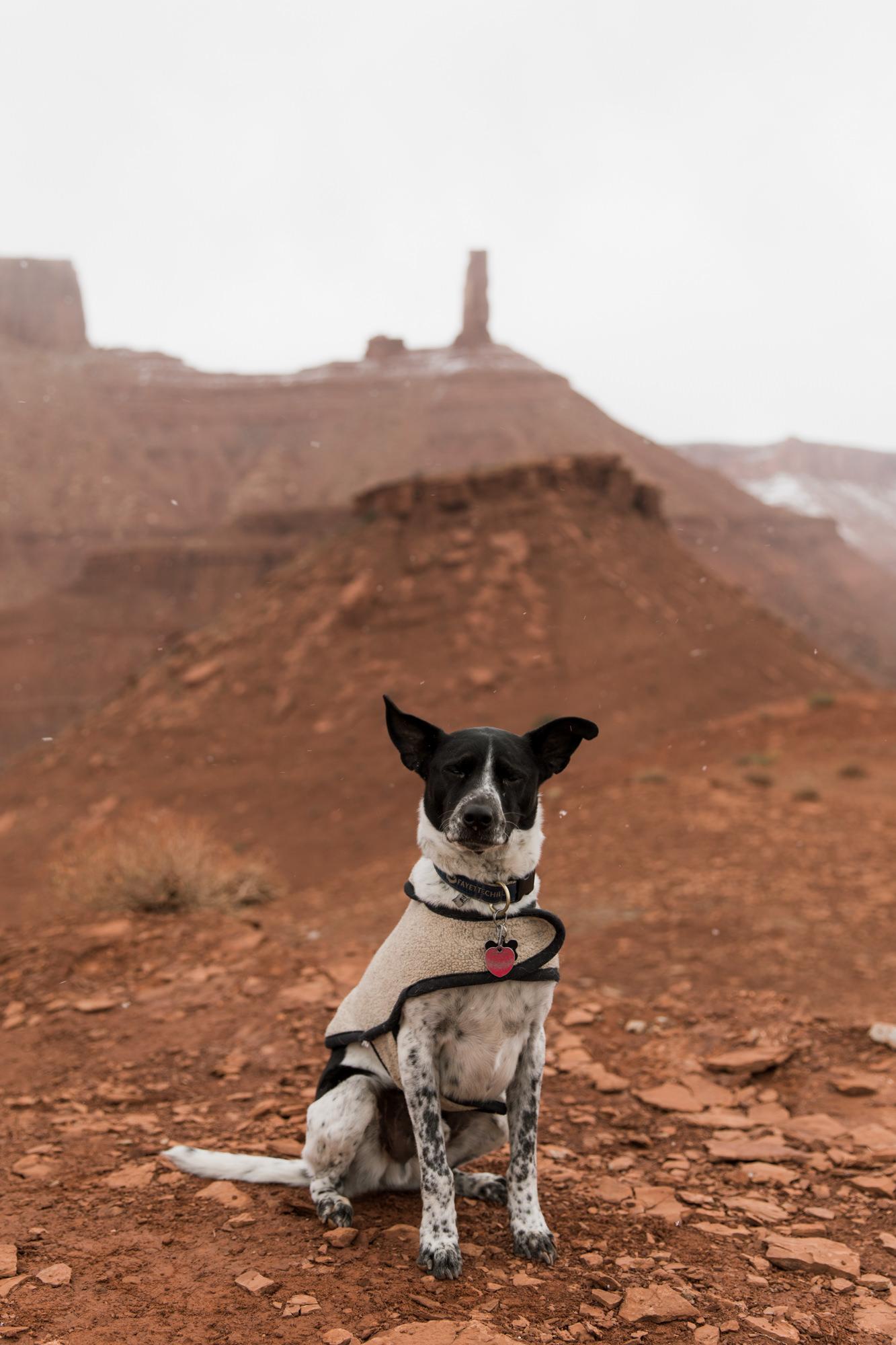 Moab-utah-adventure-4.jpg