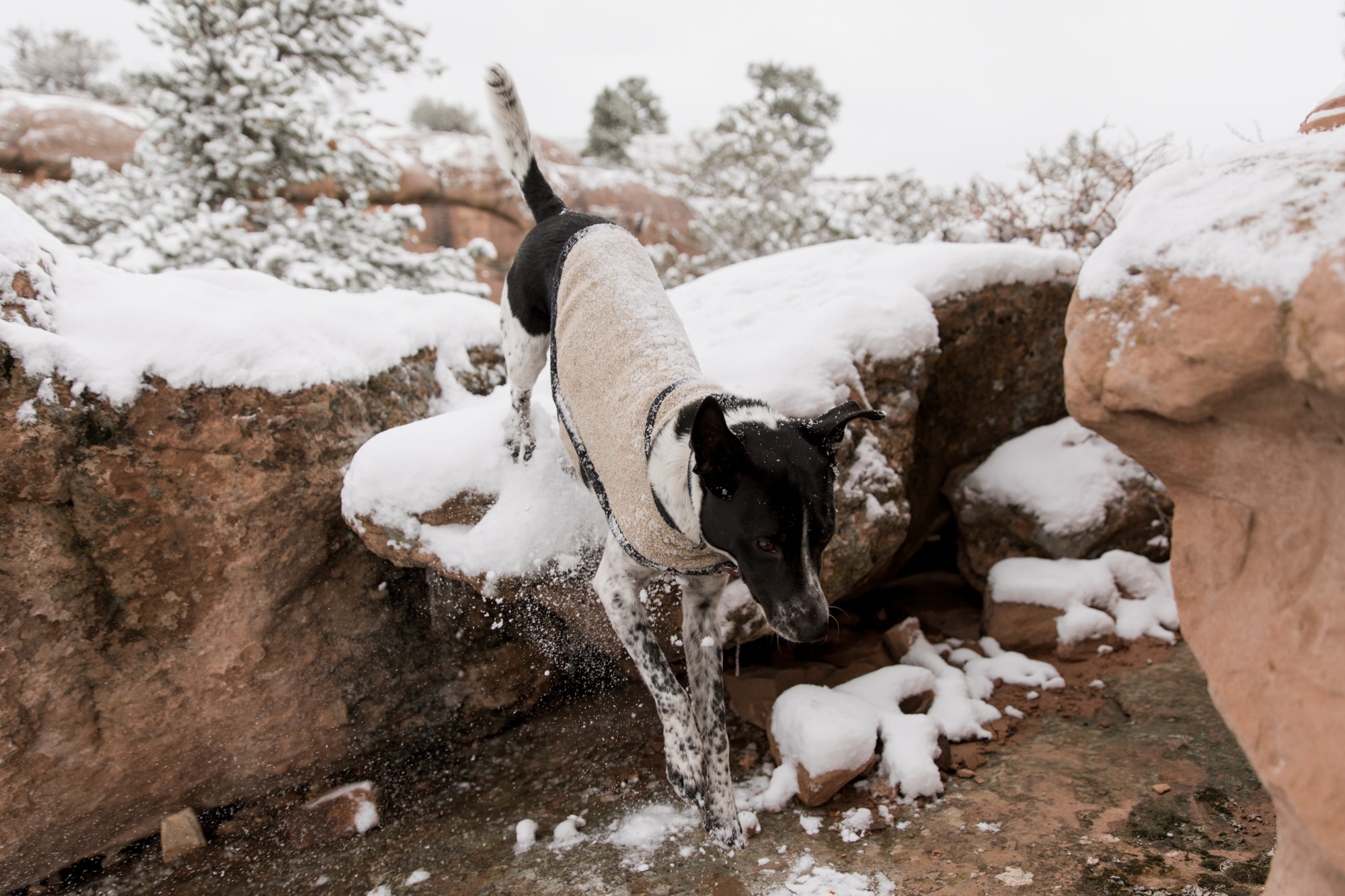 Moab-utah-adventure-10.jpg