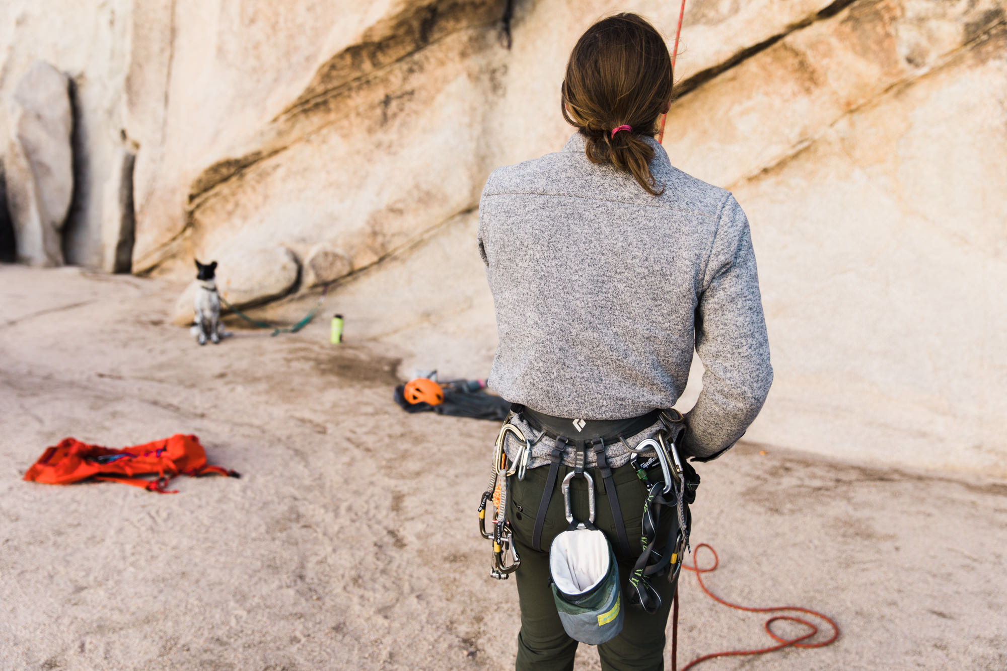 rock climbing in joshua tree national park // www.abbihearne.com