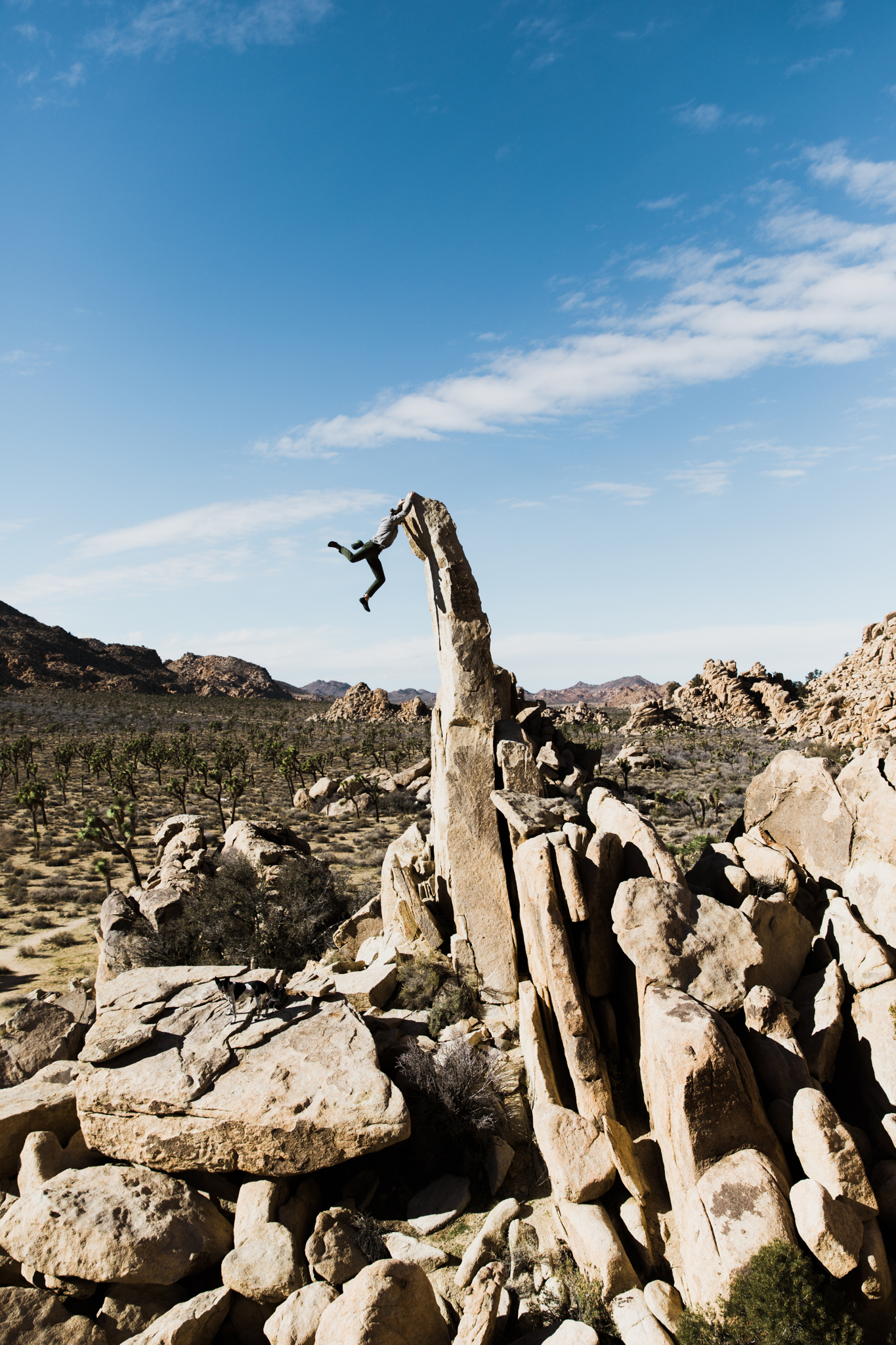 climbing in Joshua tree national park | utah and california adventure elopement photographers | the hearnes adventure photography | www.thehearnes.com