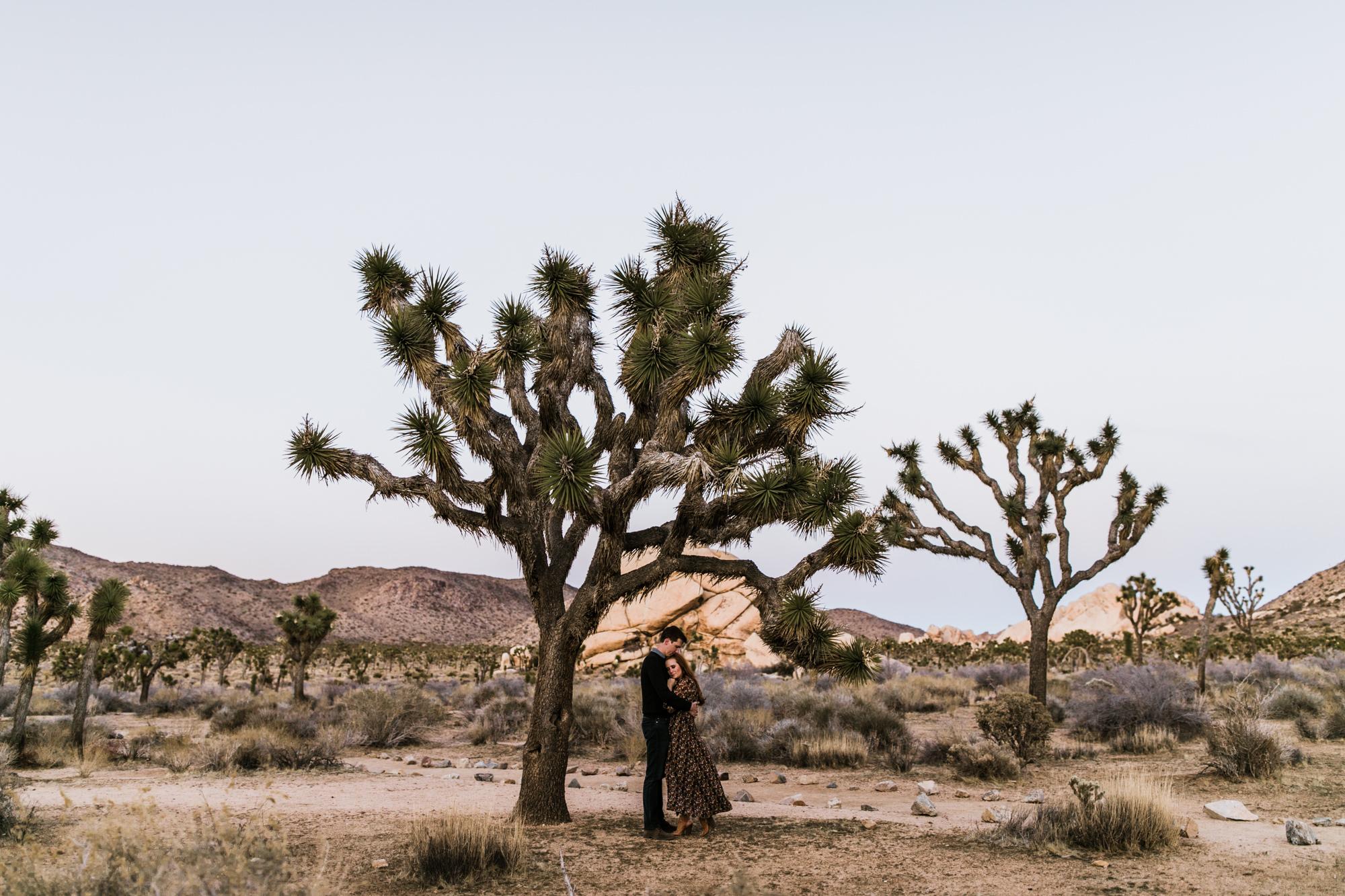 Adventurous Desert Engagement Session Joshua Tree Elopement Photographer Adventure Wedding Elopement Photographers In Moab Yosemite And Beyond The Hearnes