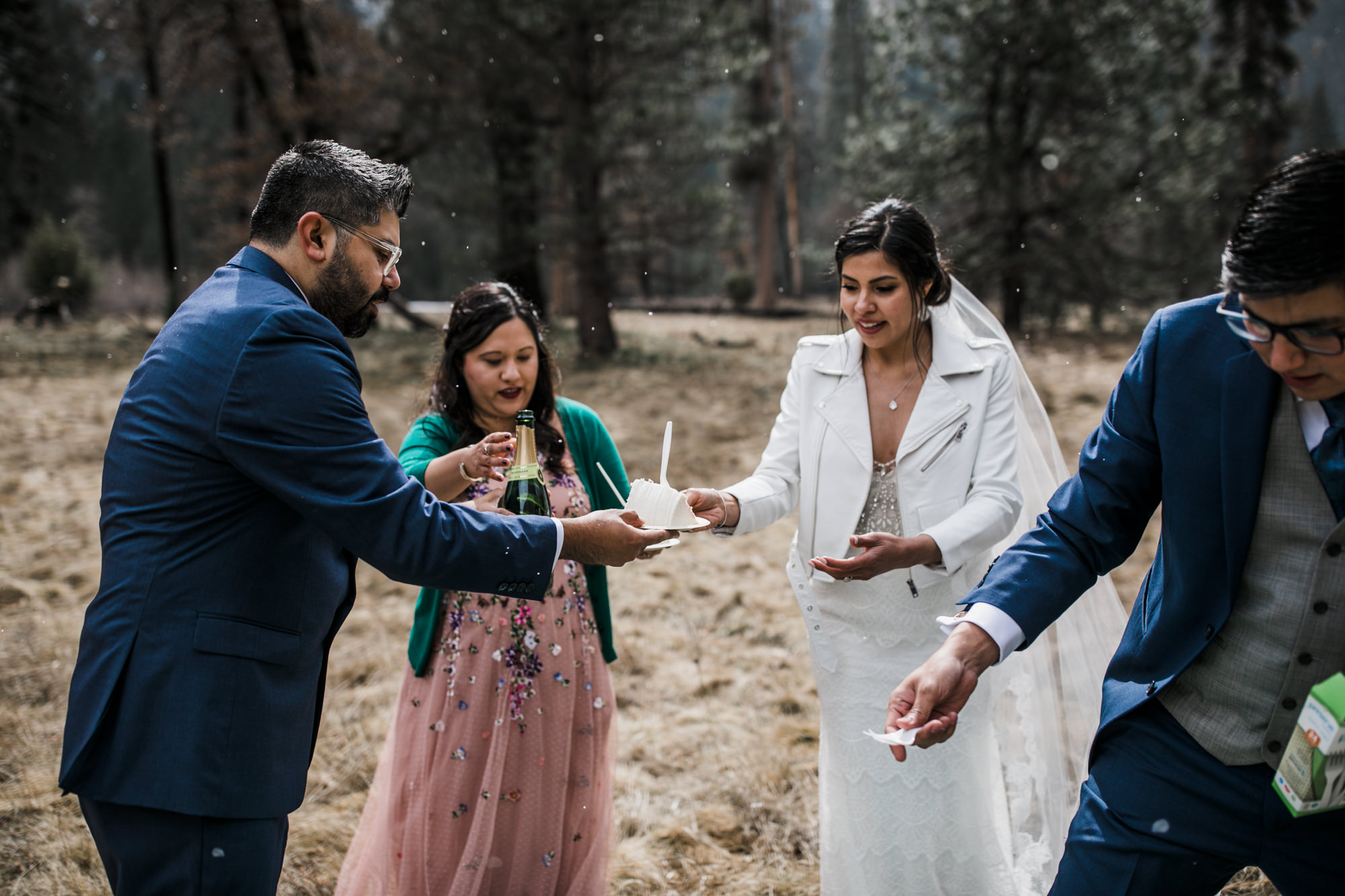 picnic reception on your wedding day