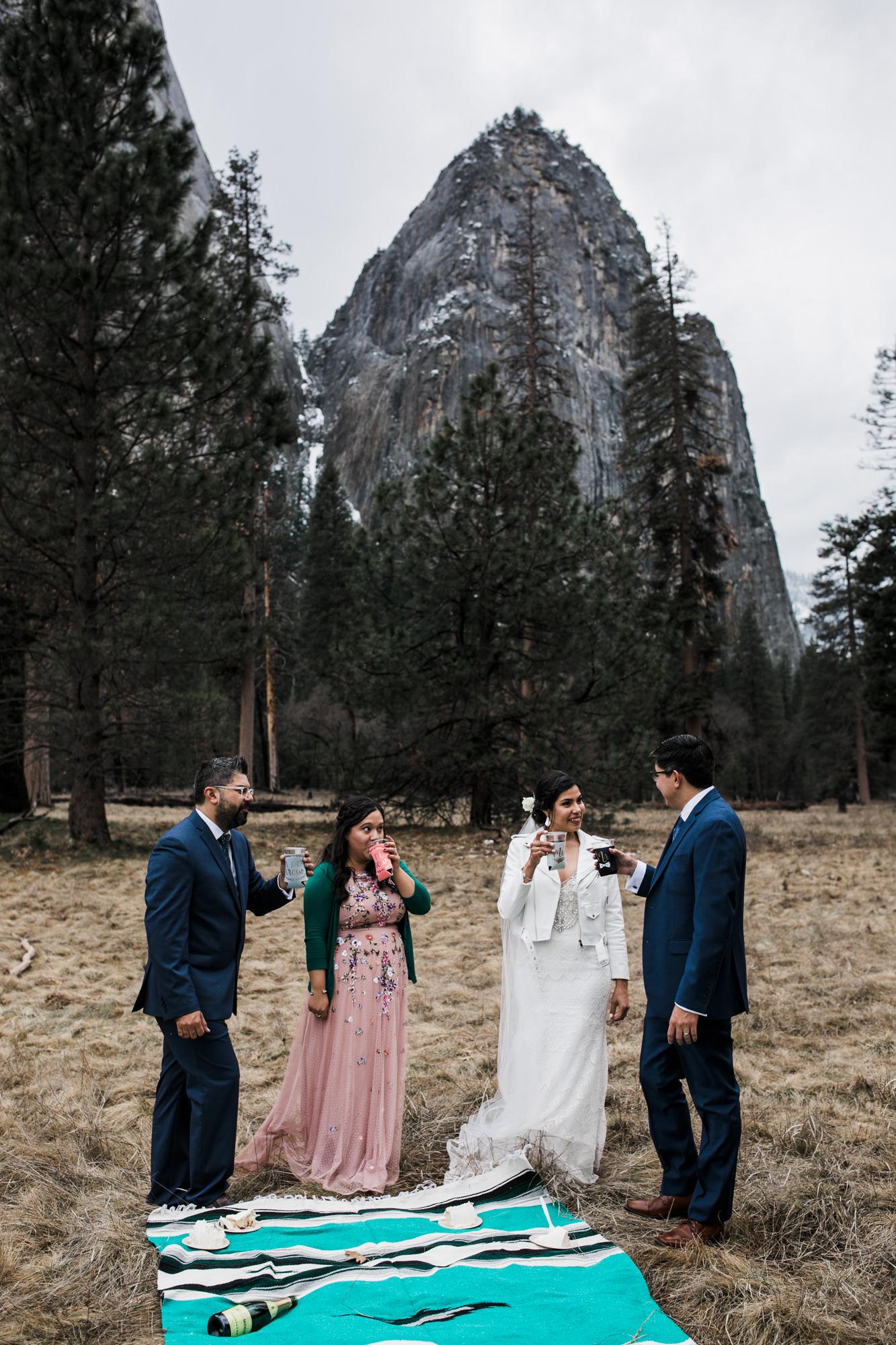 wedding picnic in yosemite national park