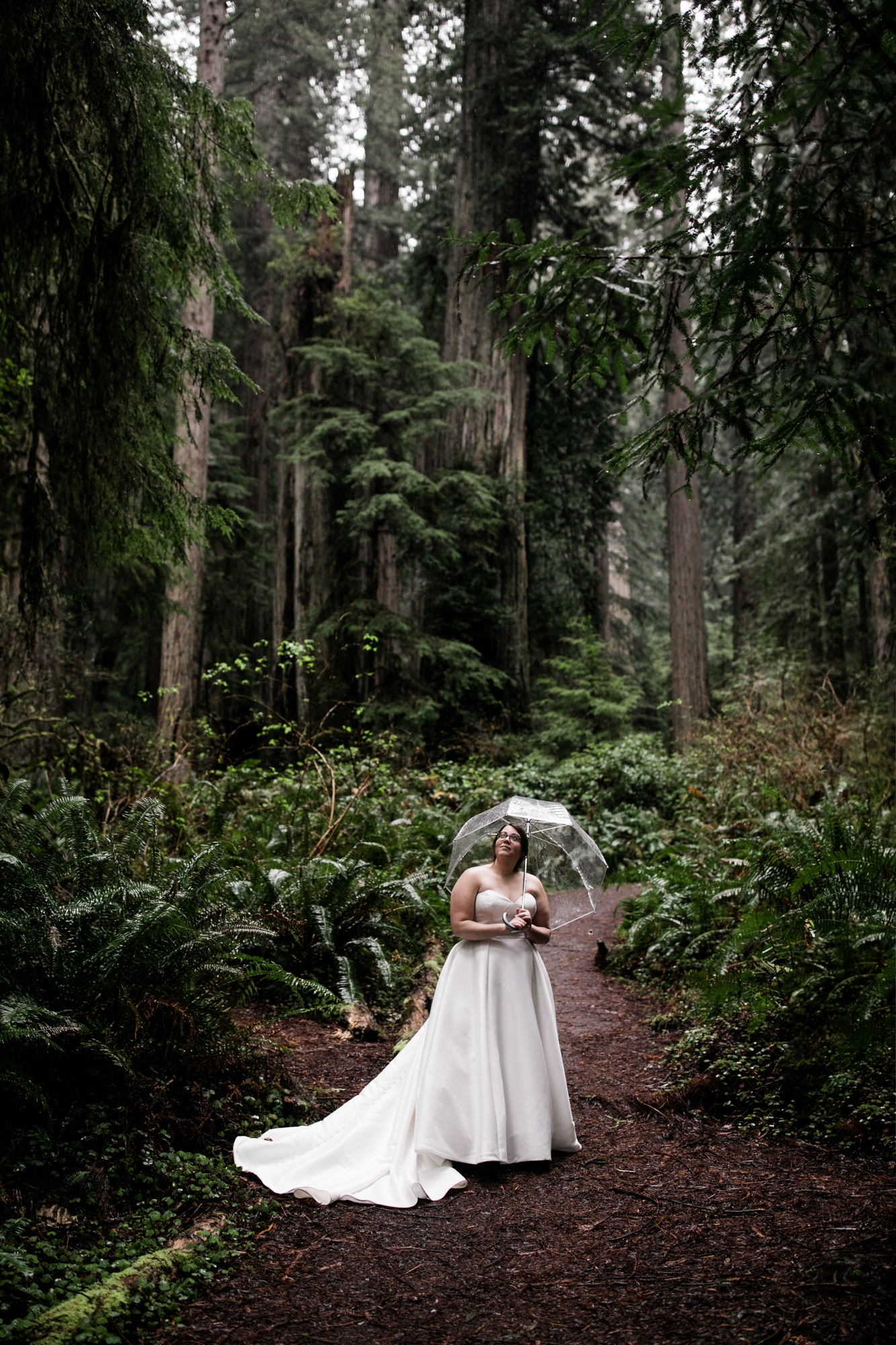 elopement in redwood national park