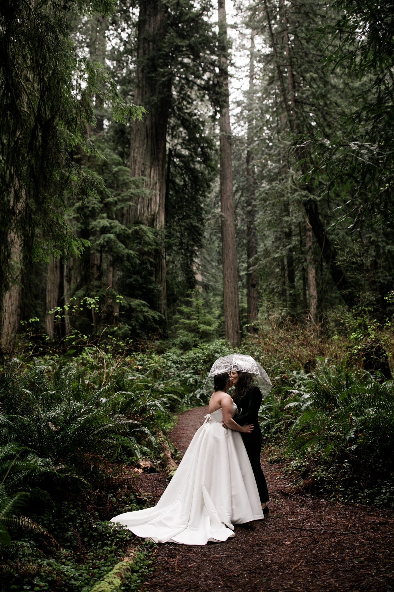 wedding photos in redwood national park