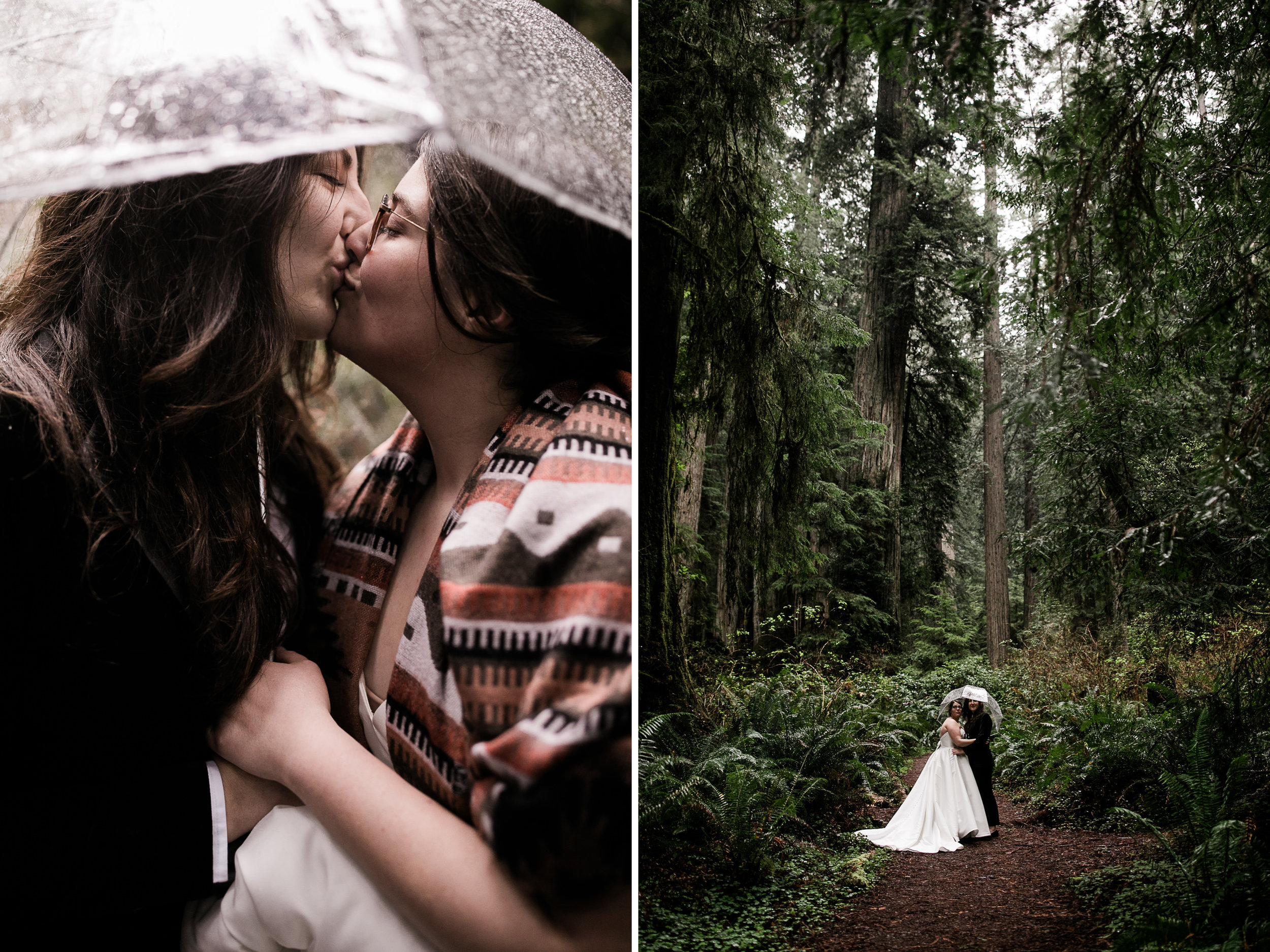 lesbian wedding couple in the california redwoods