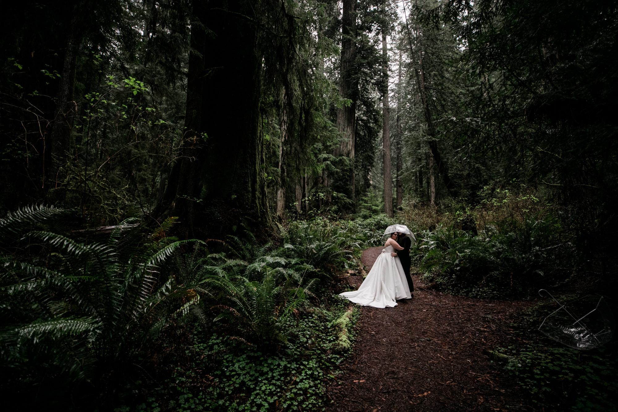 northern california wedding portraits