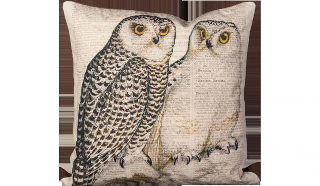 Twin Owl